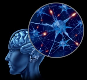 139- Rehabilitacion cognitiva - Montse Romero_ 14119586